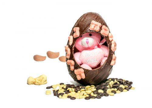 """ביצת שוקולד - נסיכה נולדהעשויה משוקולד חלב / לבן / מריר החל מ-60% מוצקי קקאו בלגי מובחר. (קיים בווריאציות שוקולד לבן/חלב/מריר ללא סוכר). הקדשת """"נסיך נולד"""" על ביצת השוקולד, מכילה דובון פרוותי המבצבץ מחלון הביצה ומגיעה באריזה שקופה מעוטרת בסרט סאטן, מוצפת סוכריות בצורת לבבות בתחתית. מתאימה מאוד כמתנה ללידה! בחרו מבין הואריאציות בן או בת נסיך נולד בתכלת, נסיכה נולדה בורוד"""