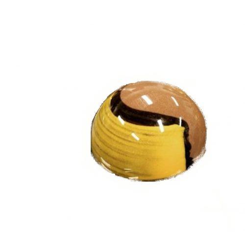 פרלין פאי פרג משוקולד בלגי במילוי גנאש שוקולד ופאי פרג